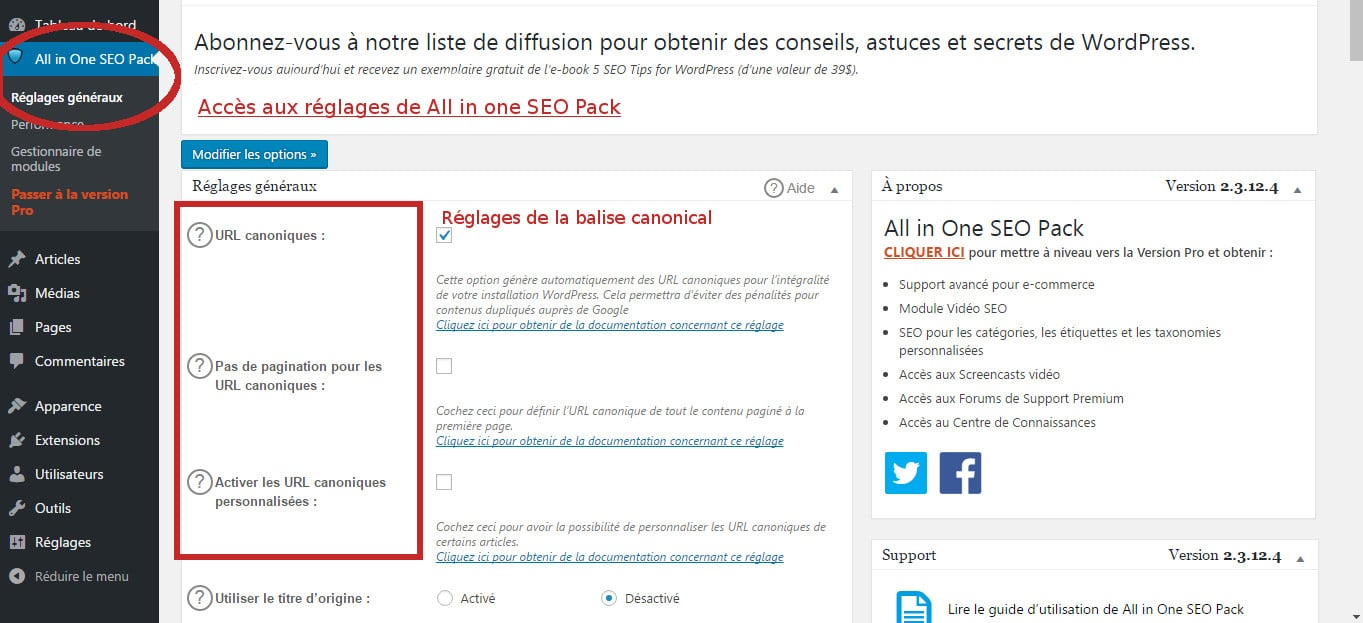 reglages all in one seo pack canonical