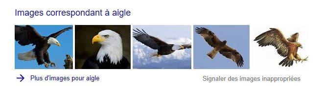 apparence des images dans un moteur de recherche
