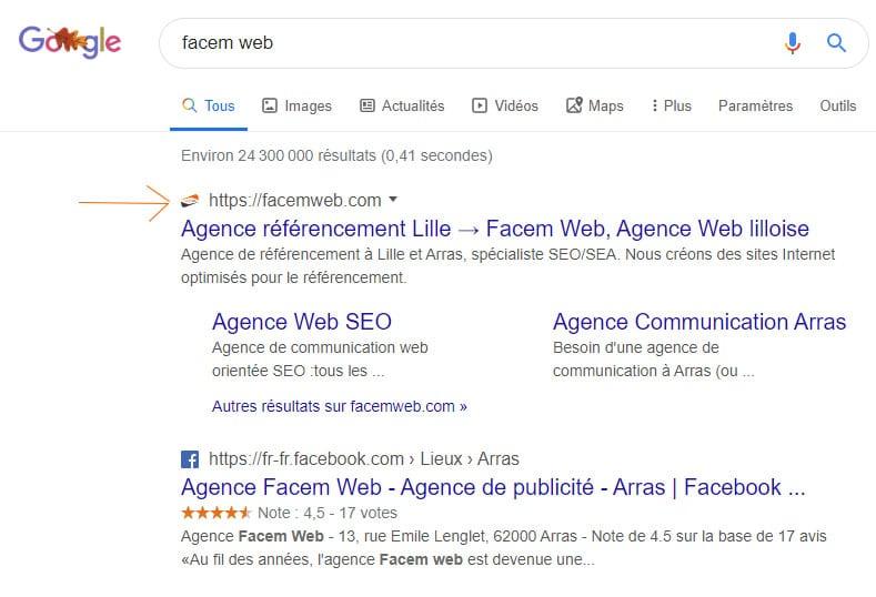 exemple affichage favicon dans google